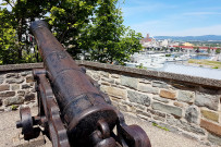 Cannon old city wall